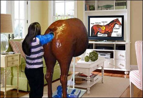 horse game for wii